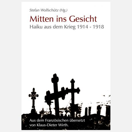 mitten_ins_gesicht_cover